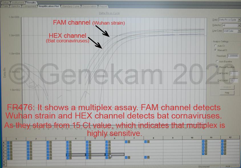Genekam_FR476_Wuhan_multipl