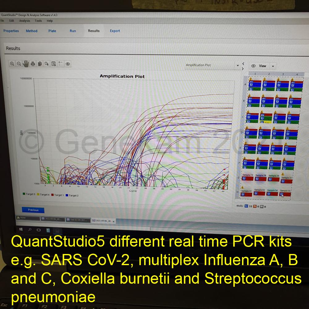 Genekam_QuantStudio5_multiplex