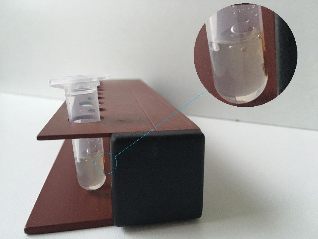 Magnetic rna isolation rack