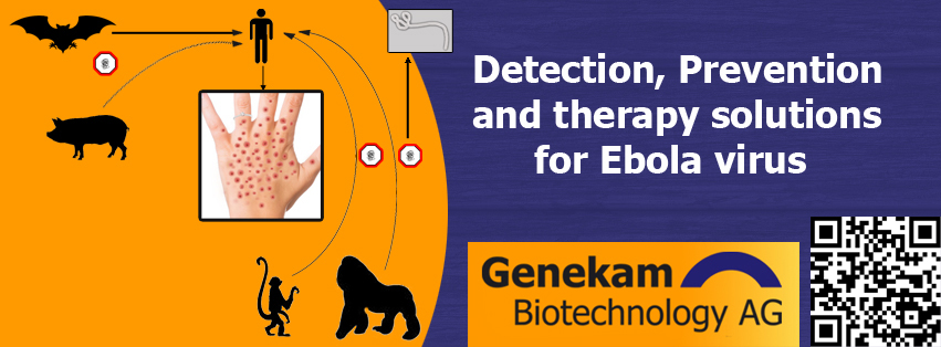 Ebola detection and therapy solutions