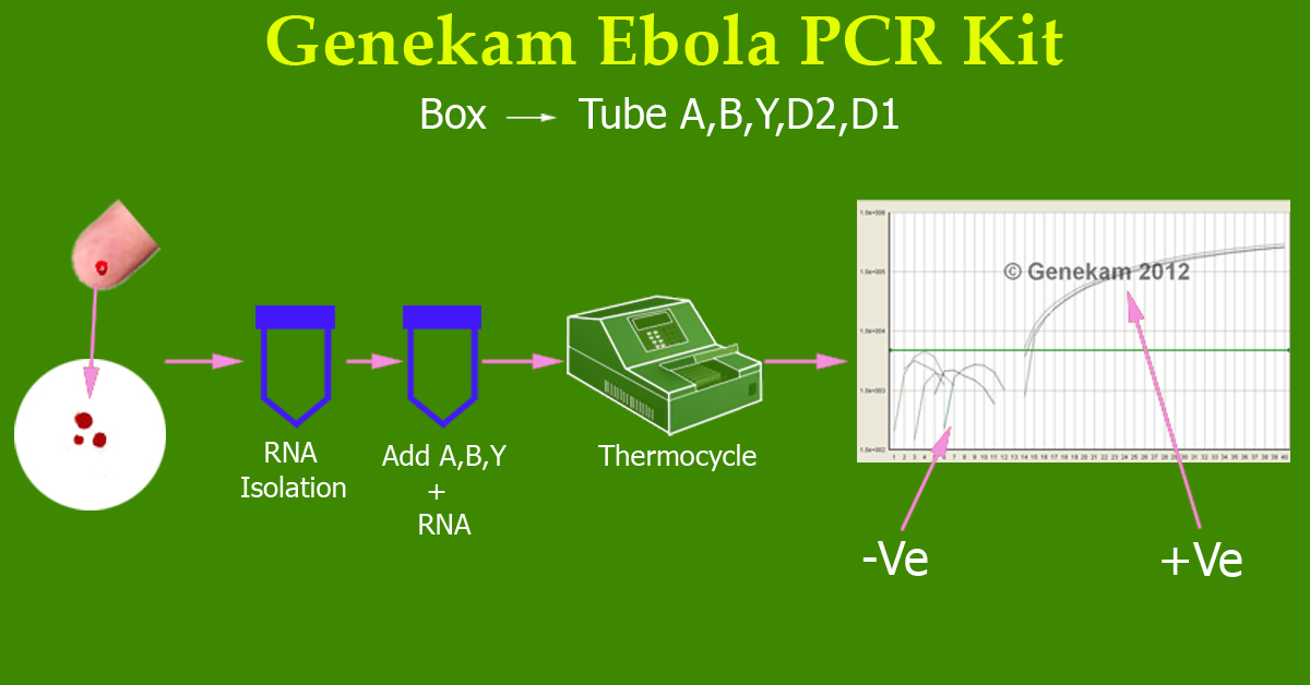 Genekam ebola realtime PCR Kit