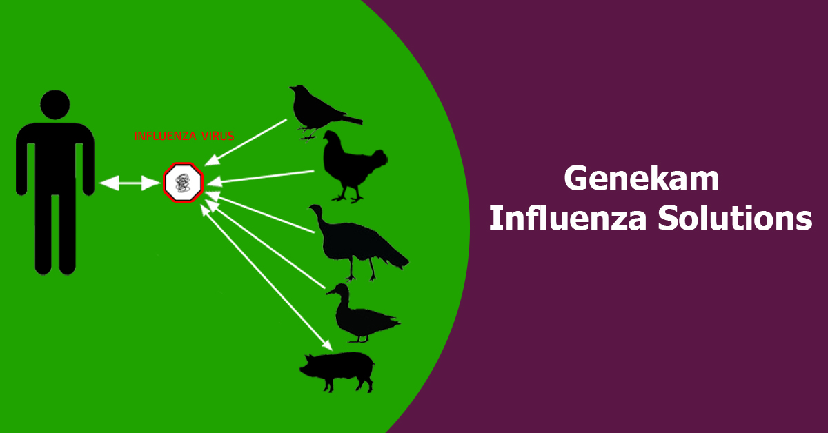 Influenza virus solution